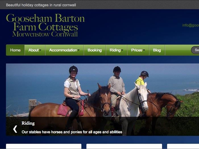 Gooseham Barton
