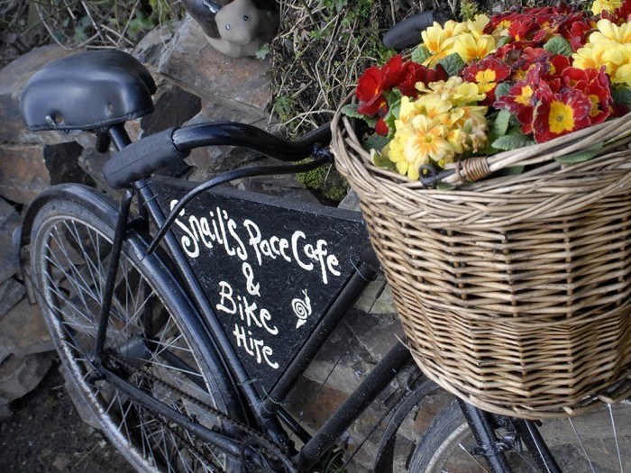 Snails Pace cafe